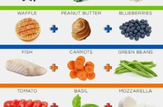 how-to-eat-healthy-reddit-2
